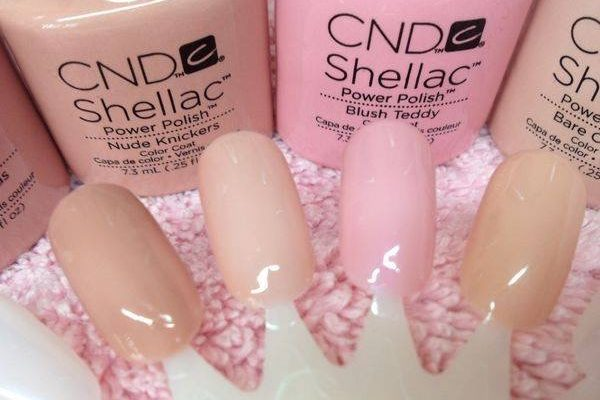 shellac daventry